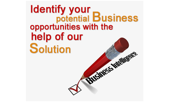 businessintelligenceSolution